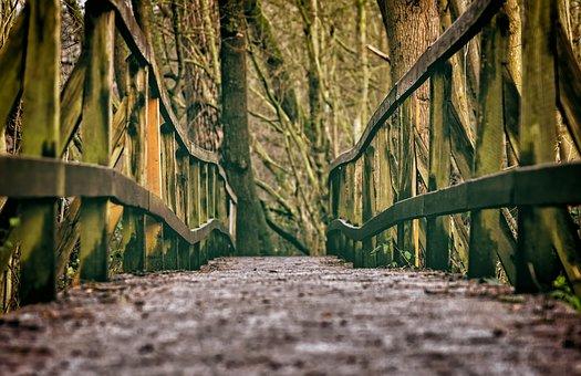 bridge-3024771__340