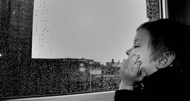 rain-20242__340